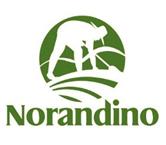 Logo_NorAndino